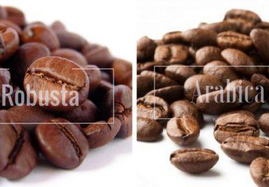 Coffee Futures – Arabica Coffee nears 9-month low