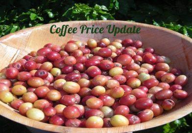 Coffee Prices (Karnataka) on 12-05-2021