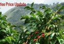 Coffee Prices (Karnataka) on 04-12-2018