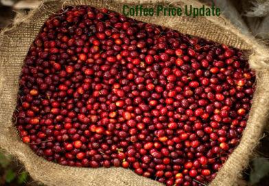 Coffee Prices (Karnataka) on 28-05-2018