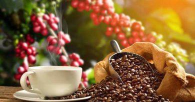 Arabica coffee sets 7-month low by weakening demand