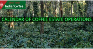CALENDAR OF COFFEE ESTATE OPERATIONS-OCTOBER